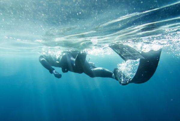 Freediving Level 1 Header