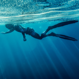 Freediving Level 1