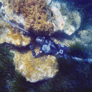 Spearfishing Instructor Trainer
