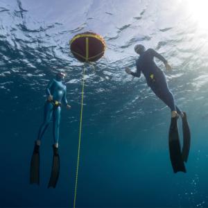 Deep Diving Workshop
