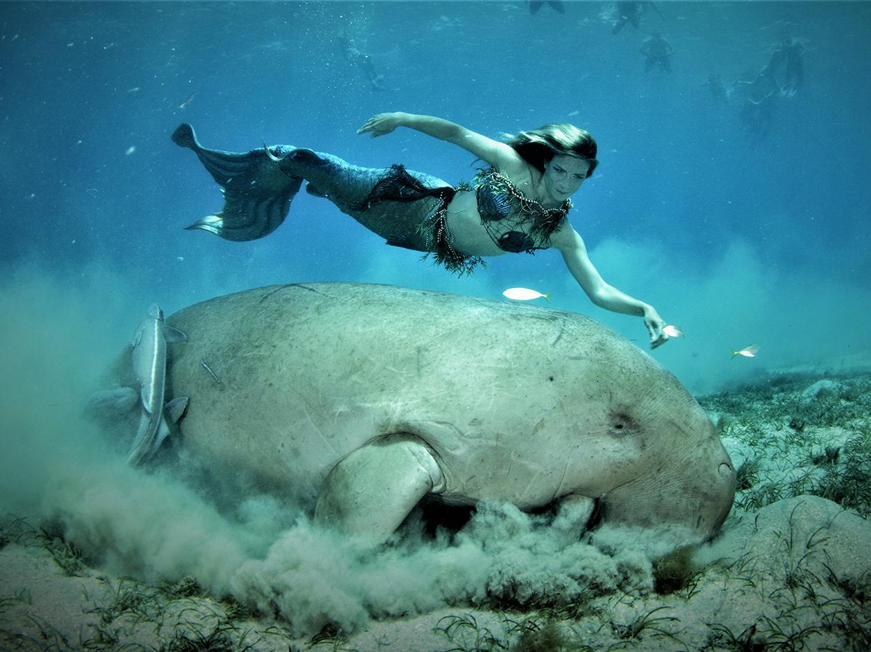 Mermaiding Experiencedays